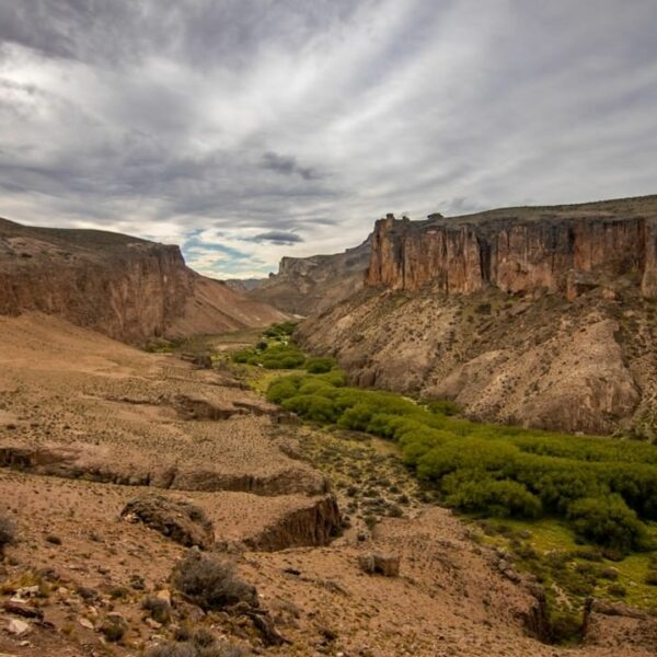 Pinturas River Canyon - Patagonia National Park, Argentina. (Credit: Fundación Flora y Fauna Argentina)