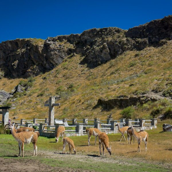 Local Cemetery and Douglas Tompkins resting place - Valle Chacabuco Section.